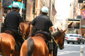 NYPD Horseback