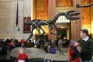 The American Museum of Natural History Dinosaur in the Lobby