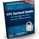 Ebook - New York City Survival Guide