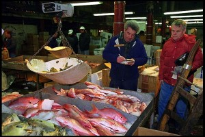 Inspection and Selection of Fish