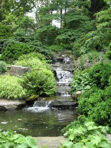 New York Botanical Garden - Rock Garden Cascade