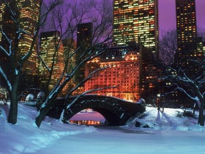 Central Park During Christmas