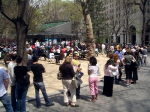 Long Lines at Shake Shack New York City Original Location - Madison Square Park