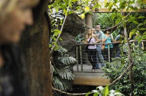 Central Park Zoo - Tropical Rain Forest Zone